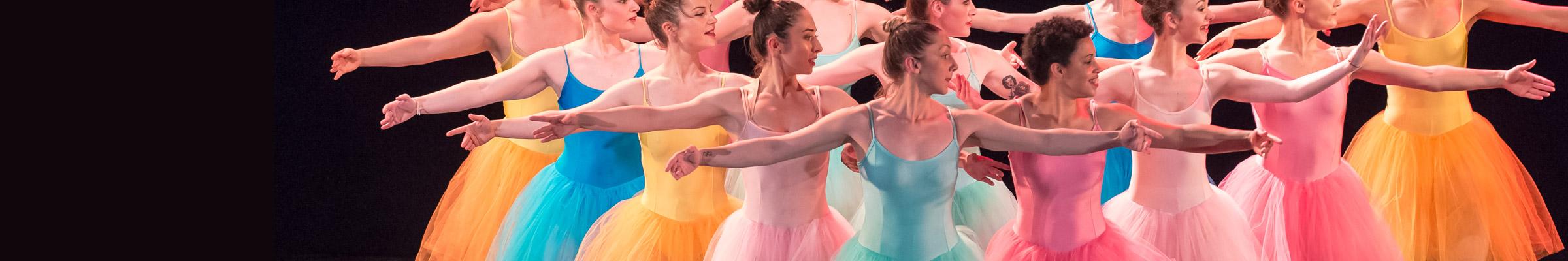 Formation danseurs - Mise à niveau